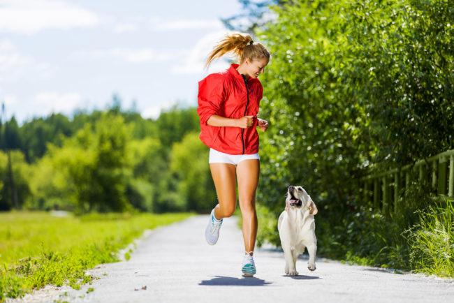 Физическая тренировка человека и собаки