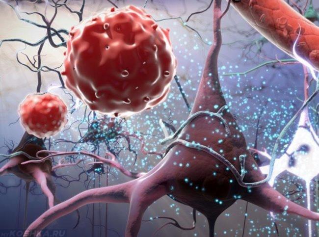 Белок в крови под микроскопом в виде рисунка
