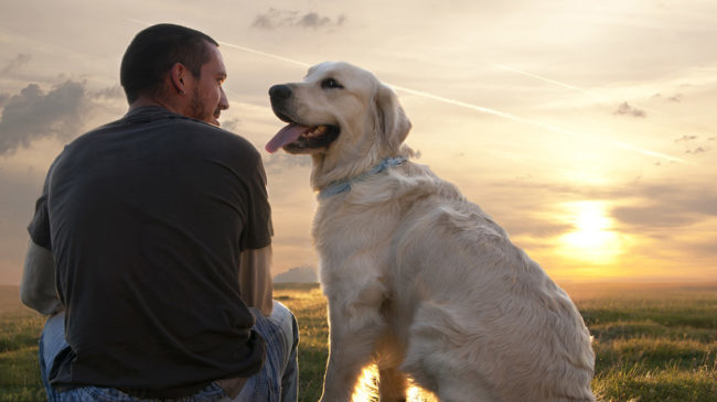 Человек и собака с высунутым языком