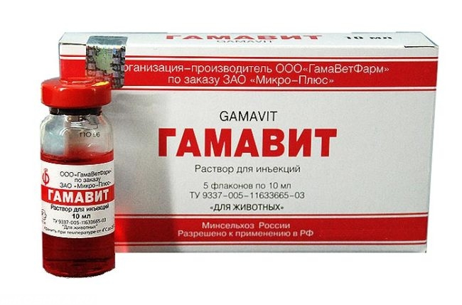 Препарат гамавит в виде раствора для инъекций