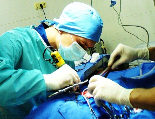 Хирургия собаки на ветеринарном столе