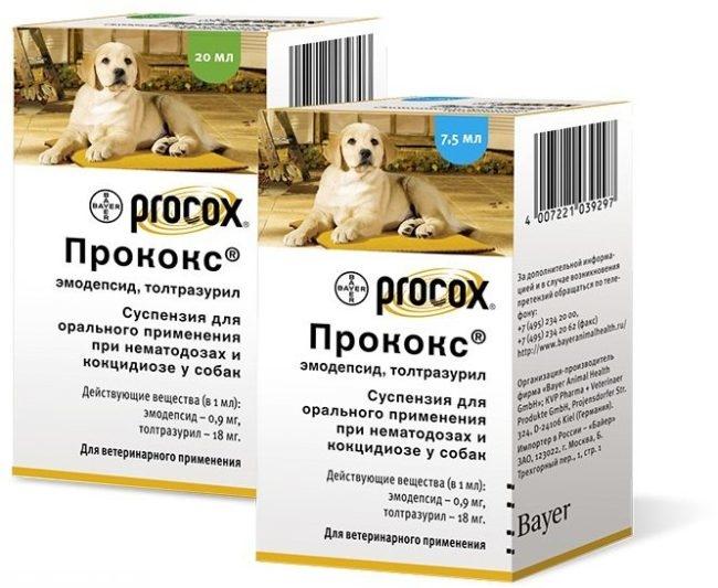 Препарат прококс в виде суспензии