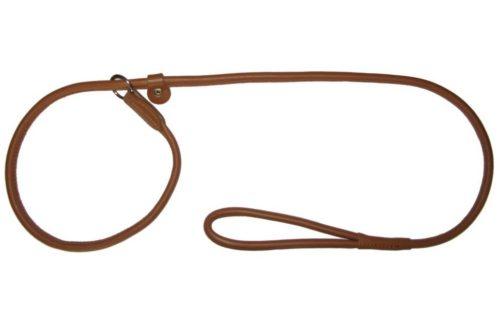 Ринговка для собаки коричневого цвета