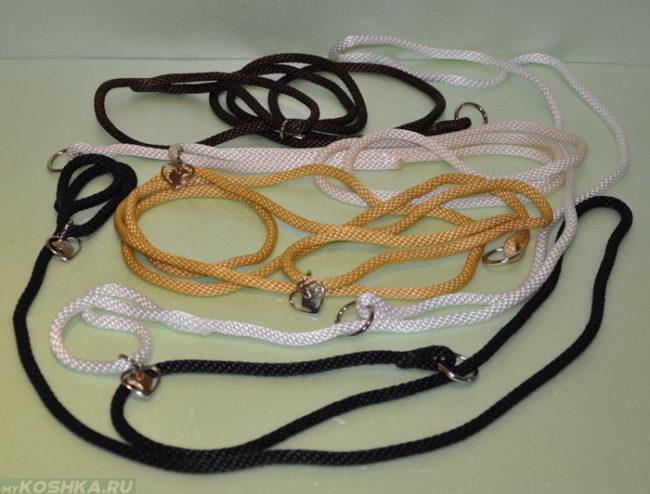 Ринговки для собак разноцветные