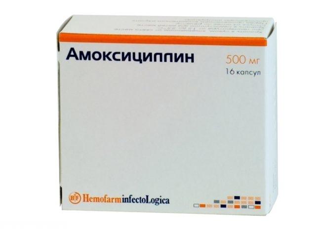 Препарат амоксициллин в виде капсул