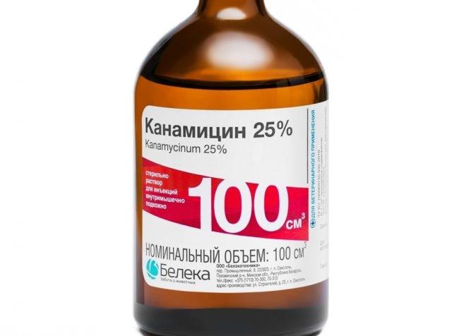 Препарат канамицин в бутылочке