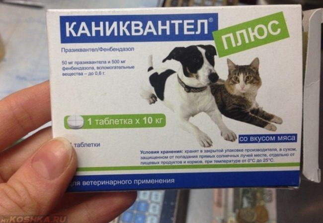 Препарат каниквантел для собак
