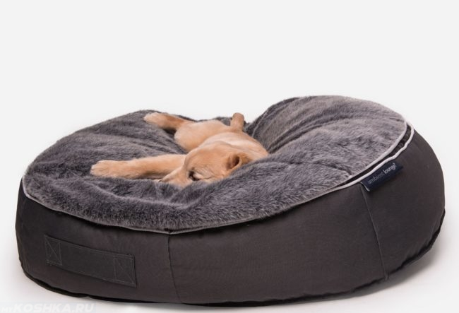Собака спящая на лежанке