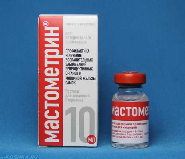 Препарат мастометрин на синем фоне