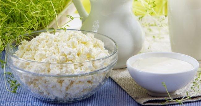 Творог и молоко в мисках