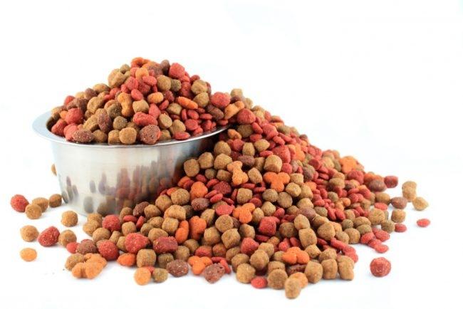 Некачественный корм для собак