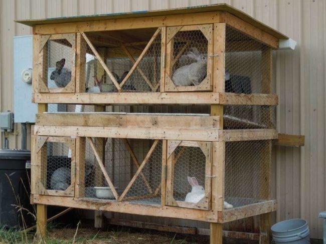 Двухъярусные деревянные клетки с кроликами в частном хозяйстве