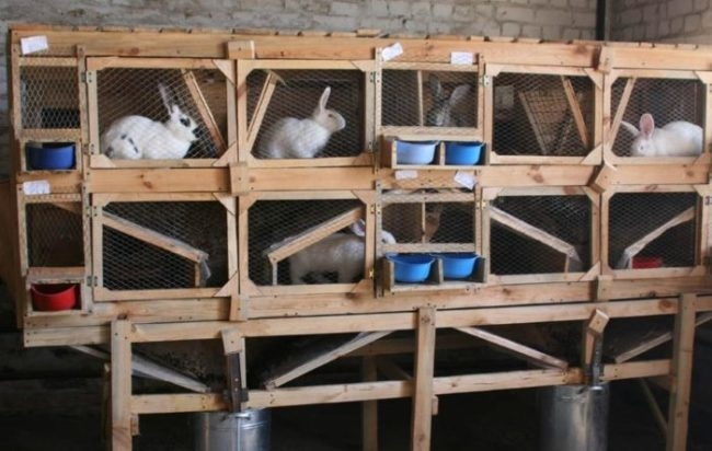 Двухъярусная клетка из досок и реек с домашними кроликами