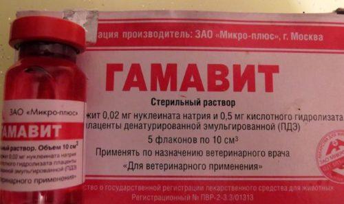 Упаковка с препаратом Гамавит для комплексного лечения миксоматоза кроликов