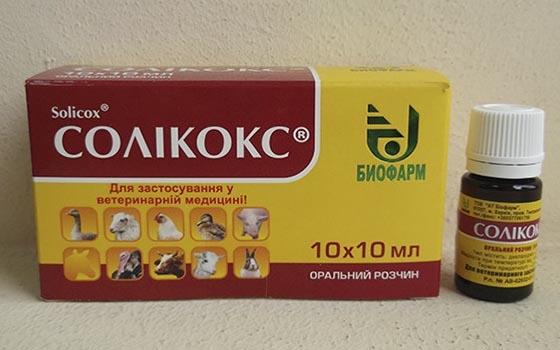 Картонная упаковка и пузырек с препаратом Соликокс от кокцидиоза у кроликов