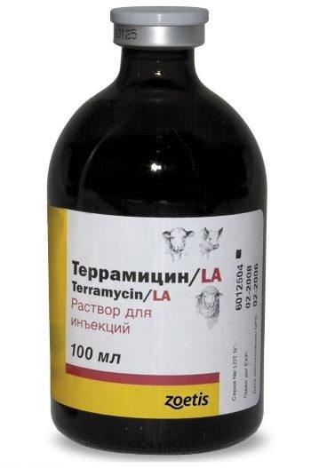 Раствор препарата Террамицин для проведения инъекций больным кроликам