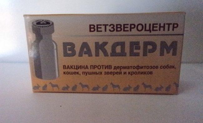 Упаковка с препаратом Вакдерм для профилактики дерматофитозов у домашних животных