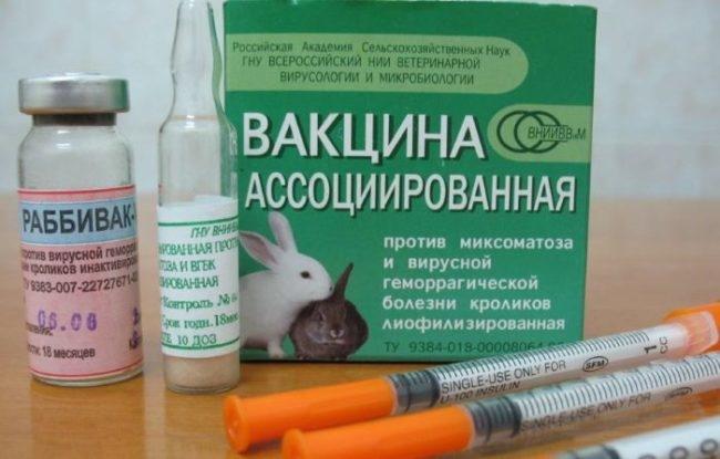 Ассоциированная вакцина для кроликов от ВГБК и миксоматоза