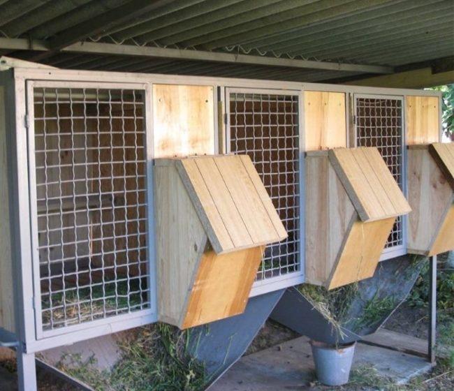 Деревянные кормушки для травы и сена на передней стенке кроличьих клеток
